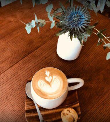 Danshari Coffee quan 1