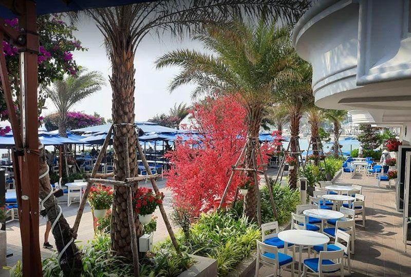 Marina Club vung tau 2