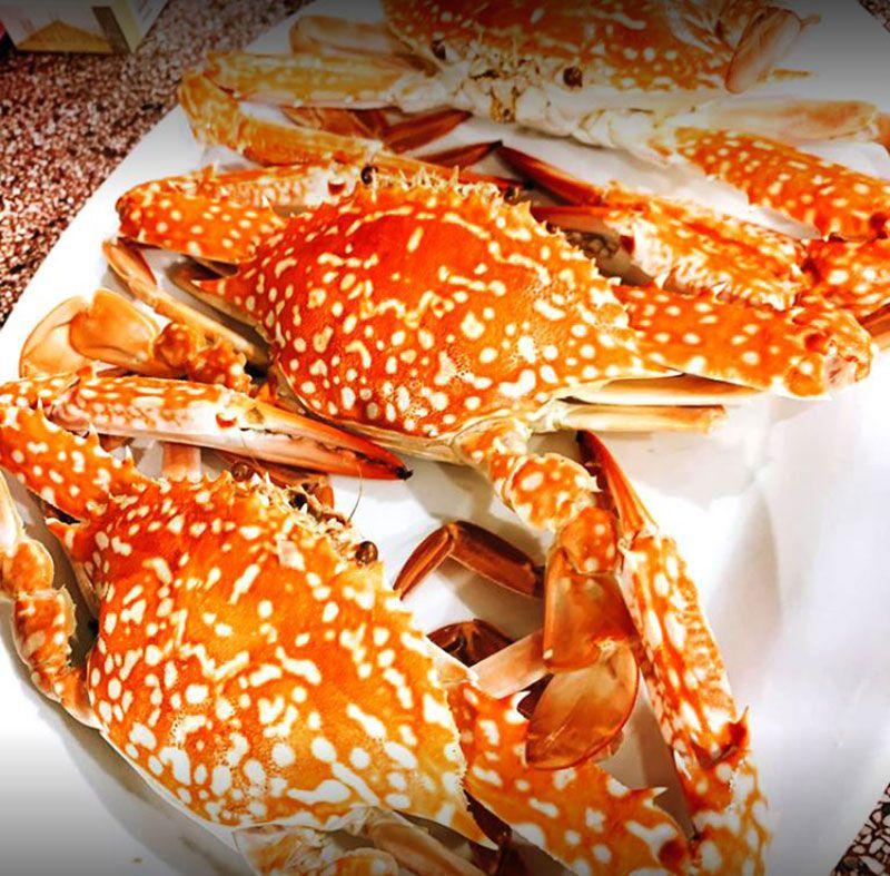 Mr Lobster phan thiet 2